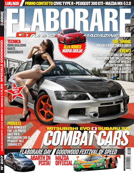 cover-Elaborare-207